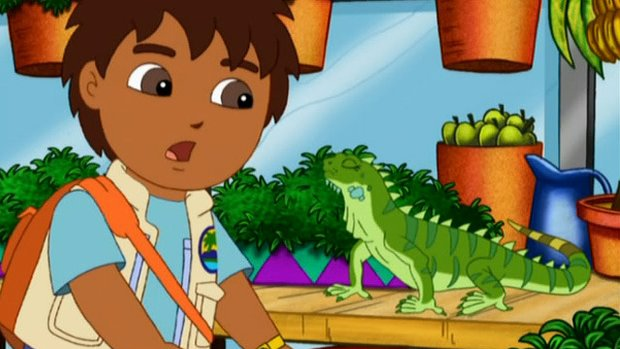 Go, Diego, Go! Series 3 Episode 3